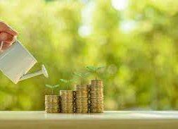 Sustainable Debt