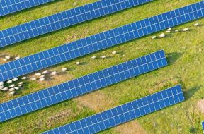 Flow Power starts production at its first two solar farms in South Australia