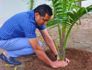 Ishver Dholakiya, Founder & MD, Goldi Solar, plants the first sapling of the massive plantation drive