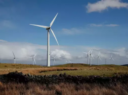 Wind lobby says Germany must do better as H1 onshore wind rises 62%