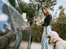 Should You Buy Electric Vehicle Charging Stocks Right Now