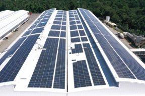 Coca-Cola and TeaM Energy complete solar energy