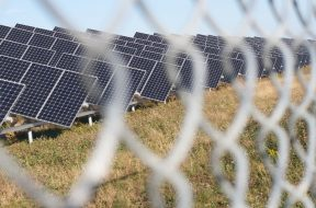 Niger opens RfQ for 50-MW solar project